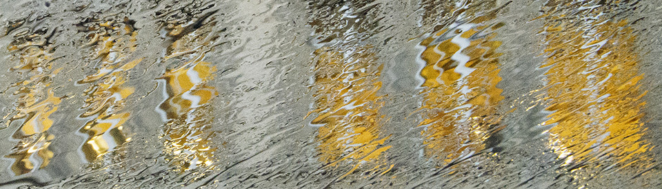 Les ondes de la pluie